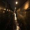 パリ退屈日記:2