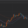 仮想通貨FX、損切りしました。