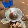 キングココナッツでオイルを作る3