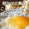 卵かけご飯はなんでこんなにうまいのか?お昼に食べてみた!