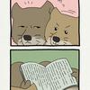 チベットスナギツネの砂岡さん「読書」