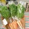 ミヤサイ 京都福知山市 無農薬野菜 オーガニック 加工品