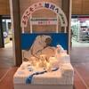 北海道東西横断電車乗り 2日目