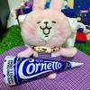 フィリピンのジャイアントコーン的なアイスクリームを食べてみた(*^▽^*)