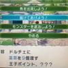 【ルーンファクトリー4】ドルチェ結婚TA 試走