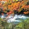 紅葉の山中温泉と、土曜日の休日ごはん