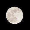 約1年ぶりに自粛生活日記を再開。其の29は、手持ちで撮影した、昨日の満月「ピンクムーン」。