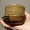 クラッスラゴーラムを陶器の鉢に挿し穂20190207