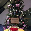 伊波杏樹さんクリスマスイベント「An seule étoile」 感想