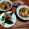 幸運な病のレシピ( 2283 )夜:キュウリと鶏肉の炒め、麻婆豆腐、豚バラブロックの炙り(カレー風味)