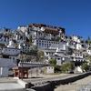 インドのチベット!ティクセ・ゴンパ