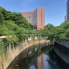 文京区を歩いて一周してみた (2)荒川区境界から駒込、千石、大塚、目白台、関口、水道ときて御茶ノ水へ戻る