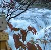 伊達市 三階滝の秋景色