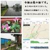 2018年6月12日(火) 【雨の1日&砂川に向けてのスタートの巻】