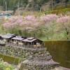 阿蘇郡小国町の『白岩温泉』は貸切家族風呂が1室600円で楽しめます!!