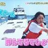 志村どうぶつ園  猫島
