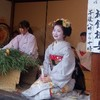 京都 恵比寿神社 (ゑびす神社) 十日ゑびす で 舞妓さんの魅力が全開