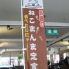 【公式】星野リゾート 猫魔スキー場 二日目