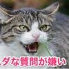 国会議員山本太郎から麻生太郎への質問がヒドイ!! ムダな質問は時間のムダですね
