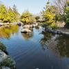 水城公園の錦鯉池(埼玉県行田)