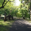 素敵な公園見つけました!【香雪園】