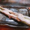 【食べログ】日本橋の高評価串焼き!鉄板神社の魅力を紹介します!