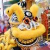 横浜中華街で春節の採青(ツァイチン)を見てきた!爆竹や獅子舞が楽しい!