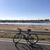 新年の最初のサイクリング