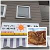 札幌市・南区のTVでも紹介された人気のお店「クロワッサンたい焼きの家 おひさま」に行ってみた!!~売切れ次第営業終了!!サクサク食感のクロワッサンたい焼きは病みつきになる美味さ!!~