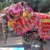 年末年始バガン旅行の方必見☆シュエサンドーパゴダで象の踊り無料公開!