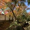 この秋一番だった紅葉スポット - 桜川市の月山寺