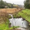 高田排水路本線調整池(千葉県千葉)