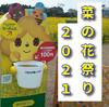 【走行動画】我が愛車ロイヤルエンフィールドを駆って浜松市から田原市の「菜の花祭り」へ!人のまばらな会場で黄色い絨毯を満喫!