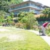 庭で写生といつもの作業 バラ