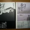 「マンガ論」第四回目(2010/5/17)