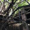 台南 安平  安平樹屋です