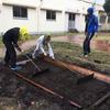 雨と風の中での苗床作り!