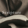 被り物と聖書解釈(Head Covering and Hermeneutics)―R・C・スプロール著『Knowing Scripture』より