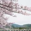 京都嵐山の桜2019 桜の場所・おすすめスポット・見頃時期・アクセス・駐車場