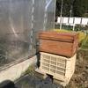 ミツバチの設置場所