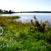 【アイルランド田舎暮らし】草原の湖で朝食 ひとりカフェ 涼しい風と幻の青いトンボ 野ウサギ