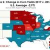 【驚愕】8月10日発表のWASDEの収穫量予測の真の意味ー【非会員限定】コーン先物情報ブログ