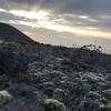 ヨーロッパ・ヒマラヤで活躍する山岳写真家が書いたnoteがお値段以上過ぎた。