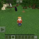 ブロック世界の探検記録【Minecraft】