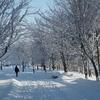 気持ちいい冬晴れの空…