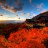 この季節は京都だね