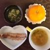 お野菜からの離乳食  [223日目  秋刀魚の塩焼き]