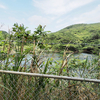 ヤンガーイチ1号池(沖縄県久米島)