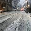 雪降りましたー!