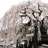清水三年坂美術館『調度を彩る蒔絵の美』と京都の1日